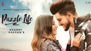Puzzle Life Lyrics Meaning in Hindi – Sharry Hassan