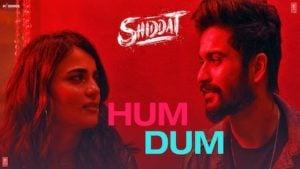 Hum Dum Lyrics Meaning in English – Shiddat